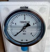 YTN-100耐振式压力表YTN-100