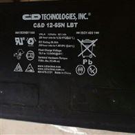12V65AH大力神储能蓄电池C D12-65N LBT