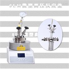 SLM500聚合反应器