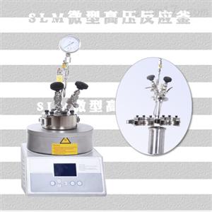 微型磁力高壓反應器