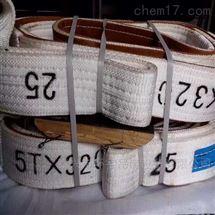 1-10T环型双扣起重吊带 扁平吊装带
