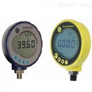 DPI 104 数字式标准压力表