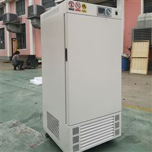 SPX-500生化培养箱