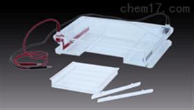 琼脂糖水平电泳仪 桥式设计水平电泳槽 耐高温水平电泳仪