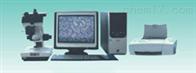 金相图像分析仪 铸铁材料金相分析仪 金相图像处理器