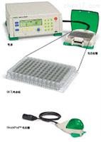 微孔板電穿孔系統