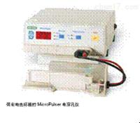 MicroPulser電穿孔儀MicroPulser電穿孔儀
