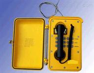 DL18-KNSP01防水防潮电话机 防潮电话仪 智能型防水电话机 防尘防冻电话机