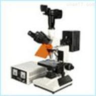 HG13-CFM-330Z荧光显微镜 数码型荧光显微镜 生物型荧光显微镜