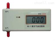 BXS08-BS-Y数字气体流量计 气体流量测定仪 数字气体流量测试仪