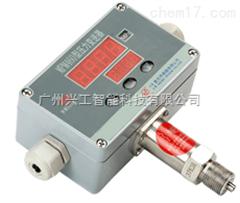 MPM460智能压力变送控制器