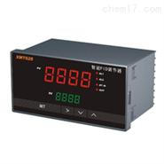 带有显示的压力数据记录仪PL100
