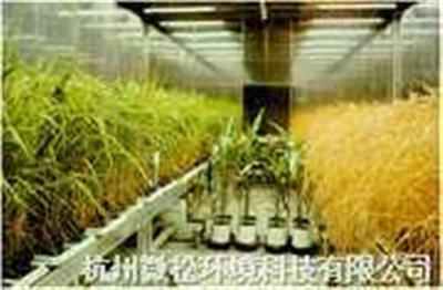 植物生長人工氣候室
