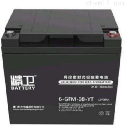 精卫蓄电池6-GFM-38-YT铅酸免维护12V38AH