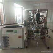 10L实验室10L灭菌型生物发酵罐