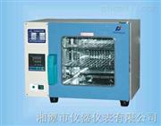 101系列-电热鼓风干燥箱-湘潭湘科仪器