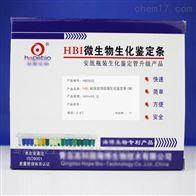 HBIS02HBI副溶血性弧菌生化鉴定 条(SN)