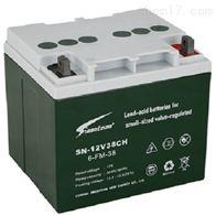 SN-12V38CH赛能蓄电池全新