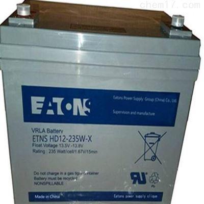 E2AL12-120伊顿蓄电池E2AL12-120 12V120AH免维护