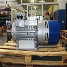 EMOD电机LO63S/2X-T66804