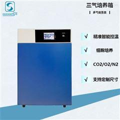 氧化碳三氣培養箱HX-80