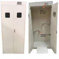 山东潍坊实验室厂家定制气瓶柜
