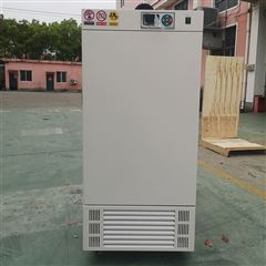 MJX-400智能霉菌培养箱