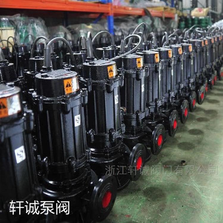 NL50-8系列污水泥浆泵