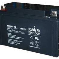 12V120AH三力蓄电池PK120-12免维护