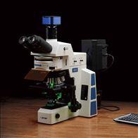 舜宇 RX50 荧光显微镜