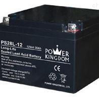 12V28AH三力蓄电池PS28L-12高级代理商
