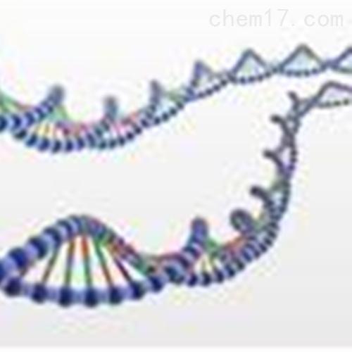 TIANGEN  Universal DNA 纯化回收试剂盒