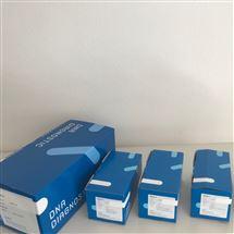 奶牛乳房炎病原菌检测试剂盒