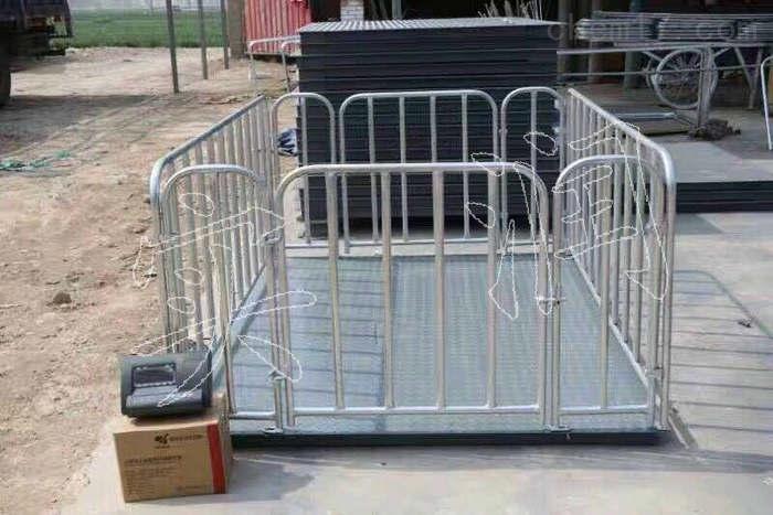 养猪场称活猪用2吨电子围栏秤