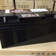 REDSUN12-65日月潭蓄电池REDSUN系列批发