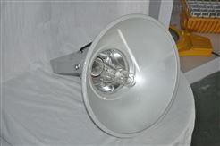 NTC9210A防震型投光灯