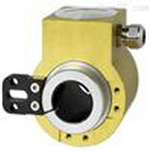 电量测试显示-角位变送器-德国HW730