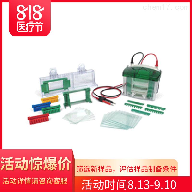 伯乐Mini-PROTEAN Tetra小型垂直电泳槽