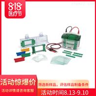 1658001伯乐Mini-PROTEAN Tetra小型垂直电泳槽