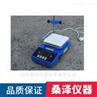 ZNCL-BS16桑泽仪器智能数显磁力加热搅拌器