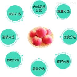 水蜜桃自动分拣机