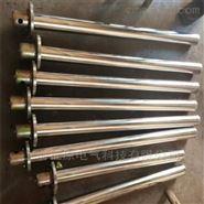浸入式管状电加热器