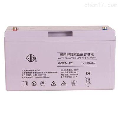 12V120AH双登 通信UPS 阀控式密封铅酸蓄电池