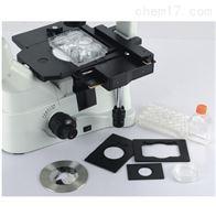 XD舜宇倒置生物显微镜