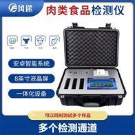 FT-BR12肉类食品检测仪