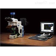 RX50舜宇荧光显微镜