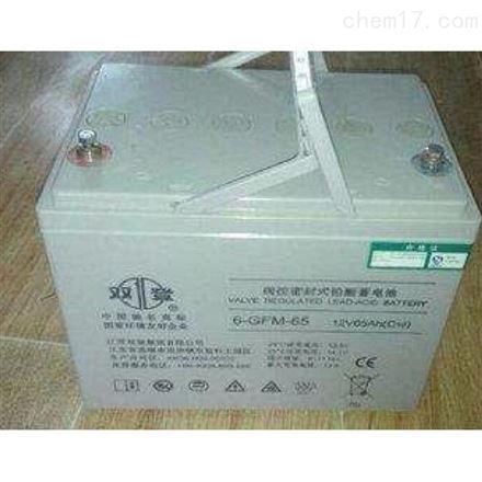 双登铅酸免维护蓄电池 12V65AH