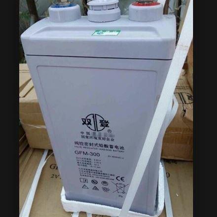 双登铅酸免维护蓄电池12V300AH