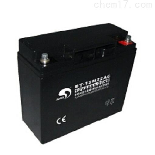 赛特蓄电池BT-12M22AC免维护