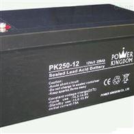 12V250AH三力蓄电池PK250-12全国包邮